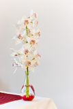 Glass vase with Cymbidium flowers - vertical image Stock Photos