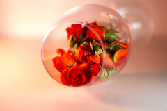 Glass vase filled with red rose petals. Aromatherapy concept. Royalty Free Stock Photo