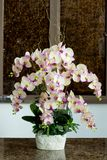 Glass vase with flowers, a beautiful ornament in a wedding Stock Photos