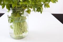 Glass vase full of fresh parsley Stock Images