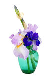 Glass vase of iris flowers Stock Photography