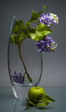 Glass vase with lilac and green apple on gray Royalty Free Stock Photos