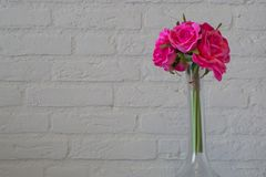 Glass vase with pink roses on a white brick wall, romantic valentines day background. A glass vase with pink roses on a white brick wall, romantic valentines day royalty free stock photo
