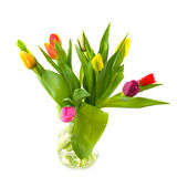 Glass vase with tulips Stock Photos