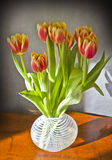 Glass vase with tulips on a wooden table Stock Image