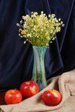 Glass Vase With Camomiles Stock Photo