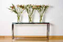 Glass vases and plants Stock Photography