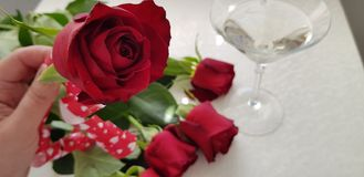 Glass with vermouth standing on white table near five red roses stock images