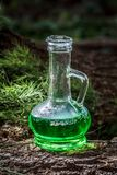 Glass vessel with green herbal potion in the woods on the trunk royalty free stock image