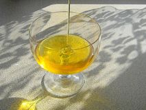 Glass vessel with honey. A clear jet of amber color. The sun`s rays illuminate the vessel royalty free stock photography