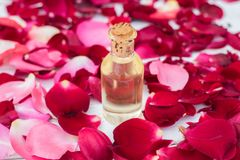 Rose petals and essential oil. Spa aromatherapy. Glass vial with rose essential oil and rose petals on a  white wooden background Royalty Free Stock Photography