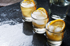 Glass of vodka with lemon and ice Stock Images