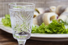 Glass of vodka and pickled herrings Stock Photography