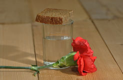 Glass of vodka and a red carnation on a wooden table Royalty Free Stock Photo