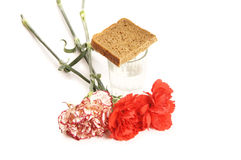 Glass of vodka and red carnations on white background Stock Photos