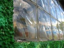 glass-wall-reflecting-grafitti Royalty Free Stock Image