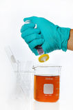 Glass ware and chemical solution. Royalty Free Stock Photo
