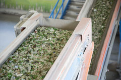 Glass waste in recycling facility. Glass particles in a machine. Glass particles for recycling in a machine in a recycling facility. Different glass packaging Stock Photos