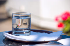 Glass оf water. With ice Royalty Free Stock Photo