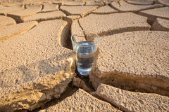 A Glass Of Water In Crack Parched Soil I Royalty Free Stock Photos