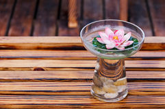 Glass Of  water  and  flower Stock Photography