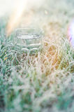 Glass of water in the frozen grass. Glass of water in the frozen morning grass covered with frost Stock Photo
