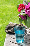Glass of water while gardening Stock Photography