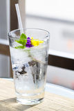 Glass of water with Garnish Stock Image