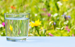 Glass of water on grassy meadow background Stock Photo