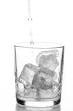 Glass with water and ice Royalty Free Stock Photo