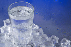 Glass of water with ice cubes Royalty Free Stock Images