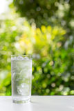 A glass of water with ice on nature background. Royalty Free Stock Photo