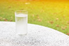 Glass of water ice on terrazzo floor table with nature background and copy space add text.  Royalty Free Stock Photography