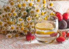 A glass of water with a lemon slice in it, a bouquet of chamomiles and a plate of ripe plums on a lace surface decorated with hips Royalty Free Stock Photography