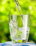 Glass of water on nature background Royalty Free Stock Photography