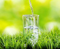 Glass of water on nature background Royalty Free Stock Images