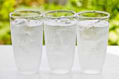 Glass of water on nature background. Royalty Free Stock Images