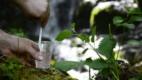 Glass of water near waterfall in a forest. Glass of drinking water near the foliage waterfall, dof selective focus stock video footage