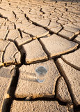 A Glass Of Water On Parched Soil VI Royalty Free Stock Photo