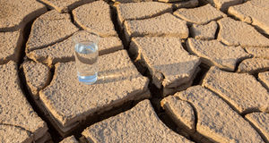 A Glass Of Water On Parched Soil VII Royalty Free Stock Image