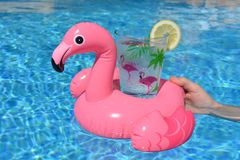 Glass of water in a pink flamingo drink holder in swimming pool. Woman holding a pink flamingo inflatable drink holder with a plastic cup decorated with palms stock photos