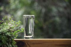Glass of water put on table in the nature background.  royalty free stock images