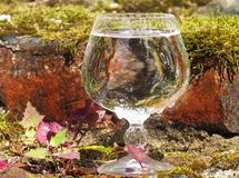A glass of water  on the ruins. Of the manor Stock Images
