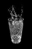 Glass of water and splashes Stock Image