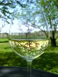 Glass water. Spring in glass water royalty free stock image