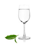 Glass of water and tea leaves on white background Royalty Free Stock Photography