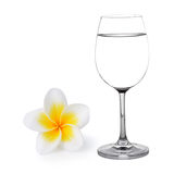 Glass of water and Tropical flowers frangipani Royalty Free Stock Photos