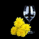 Glass with water and yellow flower isolated Stock Photo