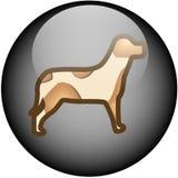 Glass Web Button Dog Stock Photo