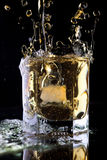 Glass of whiskey. Stock Images